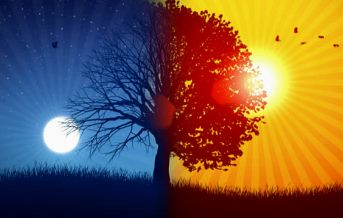 stock-video-3932132-tree-and-sun-moon-02-background