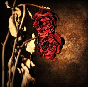 What Flowers Can Teach Us-grunge-wilted-roses