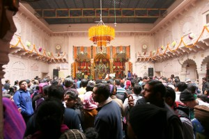 Feeding at Radha Damodar Temple on the ocassion of Jiva Goswami's Disappearance Day