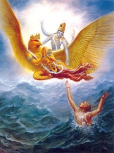 krishna-the saviour