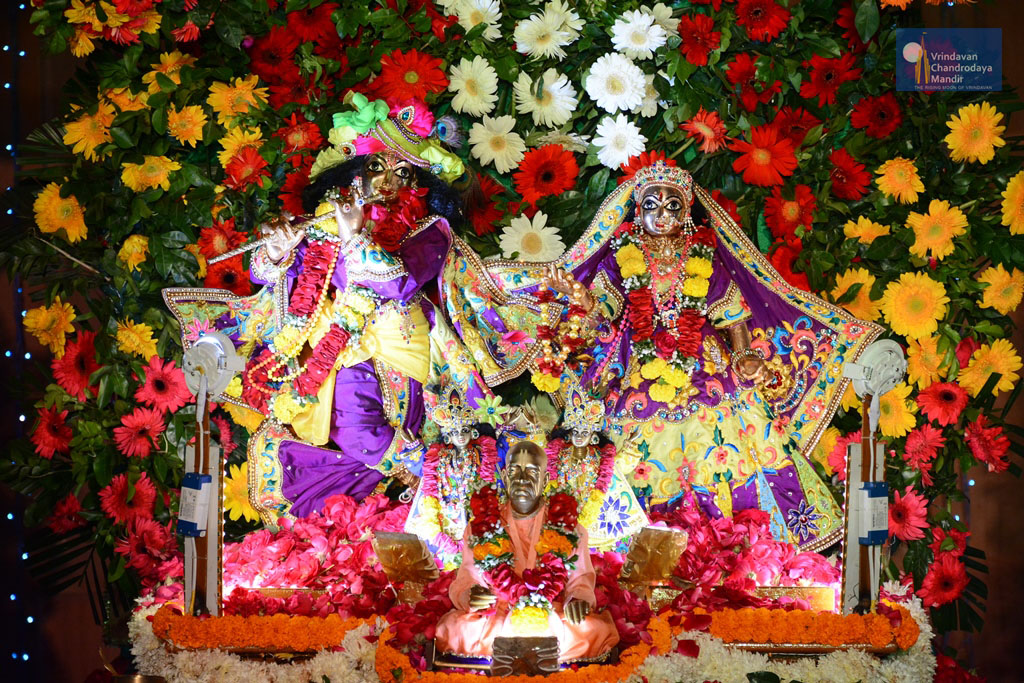 Their Lordships Sri Sri Radha Vrindavanchandra at Kirtan Mela